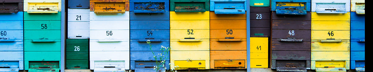 colorful hives in blue, yellow, white and green, with grass and bees
