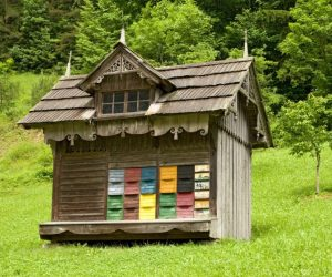 Colorful apiary (beehouse)